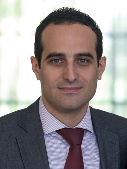 Νίκος Μανιάτης